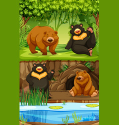 Bears in nature scene vector