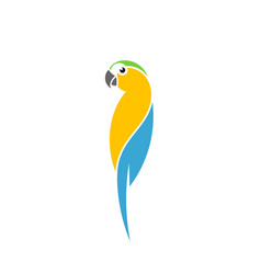 blue macaw parrot logo vector image