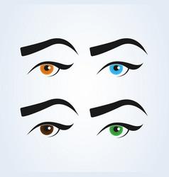 Female eye and eyebrow set simple modern design vector