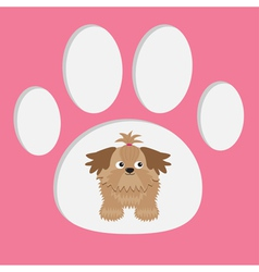 Little glamour tan shih tzu dog in the paw print c vector
