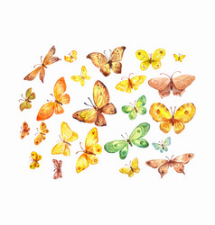set of watercolor yellow brown green butterflies vector image