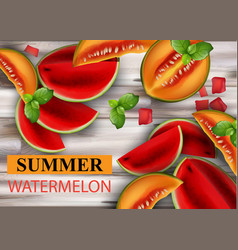 summer watermelon and melon fruits slices vector image