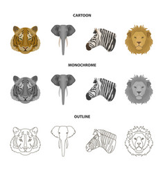 Tiger lion elephant zebra realistic animals vector