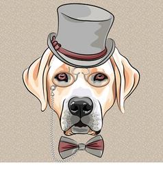 hipster dog Labrador Retriever vector image vector image