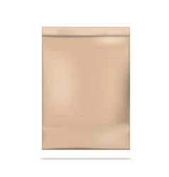 brown clear empty blank craft paper bag packaging vector image