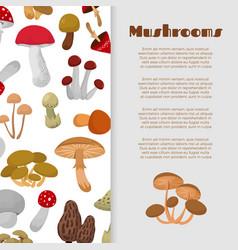 fresh autumn mushrooms and toadstools vector image