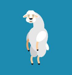 lama alpaca sad animal sorrowful emoji vector image