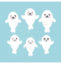 Large set Funny white fur seal pups cute winking vector