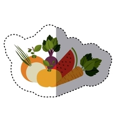 Sticker colorful variety fruits and vector