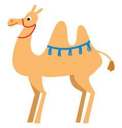 A light brown camel in desert or color vector