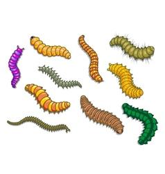 Cartoon worms vector