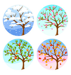 four seasons of tree and landscape vector image