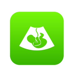 ultrasound fetus icon digital green vector image