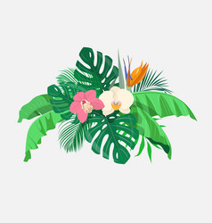 composition of tropical leaves and exotic flowers vector image vector image