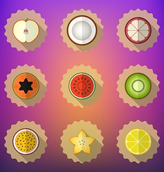 Fruit Flat Icon Set Include apple lemon papaya vector image vector image