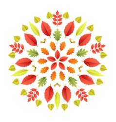 Autumnal mandala fall colorful leaves vector