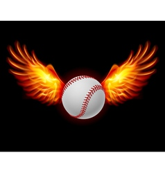 Baseball fiery wings vector image