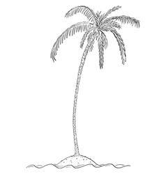 cartoon drawing palm tree on small island in vector image