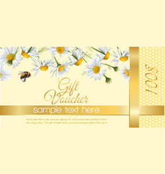 Flower gift vouchers vector image