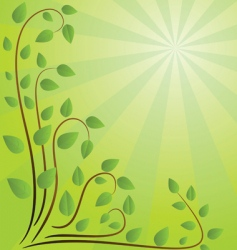 green background with branches illustration vector image