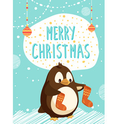merry christmas card penguin with knitted socks vector image