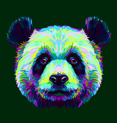 panda graphic abstract hand-drawn portrait vector image