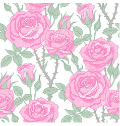Pink roses pattern vector