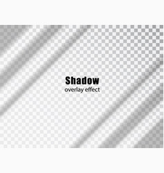 shadow overlay transparent effect light and vector image