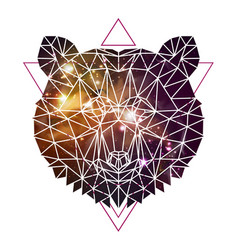 Abstract polygonal tirangle animal bear vector