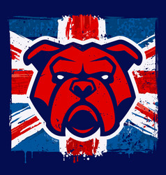 bulldog mascot on grunge british flag vector image