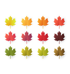 colorful autumn leaves set isolated on white vector image