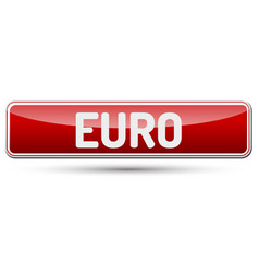 euro - abstract beautiful button with text vector image