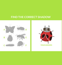 matching game with cute insects find correct vector image