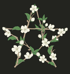 pentagram sign made with branches from a blooming vector image