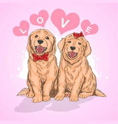 puppy cute love vector image