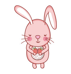 rabbit and food vector image