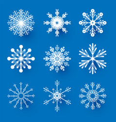 snowflakes set elegant design elements vector image