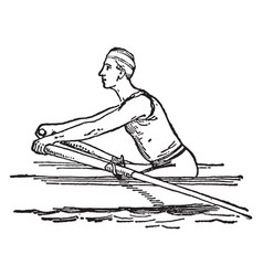 Steps positions in rowing vintage vector