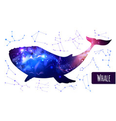 Whale silhouette with outer space background vector