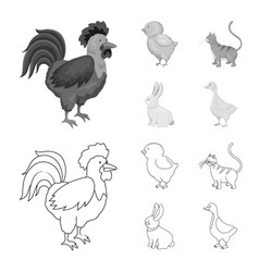 design of breeding and kitchen logo set of vector image
