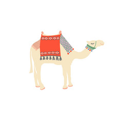 egyptian camel decorated with bright carpets and vector image