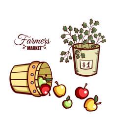 Farmers market apples salad vector