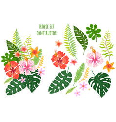 set tropical flowers cartoon rainforest vector image