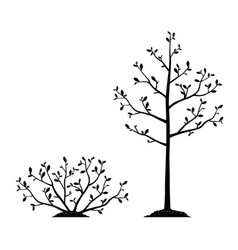 Silhouettes young tree and bush isolated vector