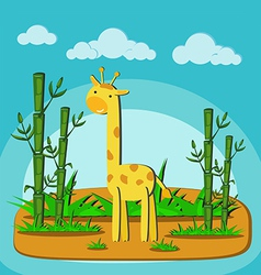 giraffe eating bamboo in forest vector image