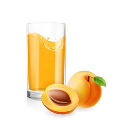 Apricots juice in glass 3d realistic vector
