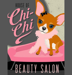 Chihuahua dog in beauty salon vector