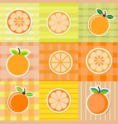cute orange fruit stickers vector image