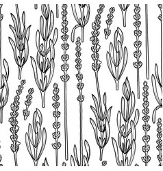Graphic lavender pattern vector