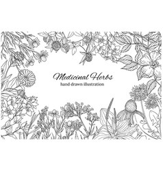 Horizontal monochrome banner with medicinal vector